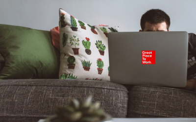 man laying on sofa with cactus cushion and grey laptop with great place to work logo